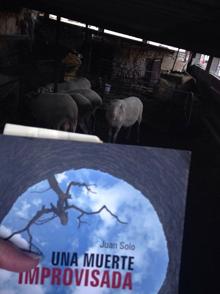 Una muerte improvisada o El silencio de los corderos - Una muerte improvisada – Juan Solo – Juan Solo escritor – Novela negra – juansolo.es – #JuanSolo - Vaughan